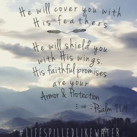 Psalm 91-4