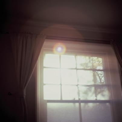 morning-light-hasselblad
