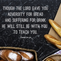 He Will Teach You